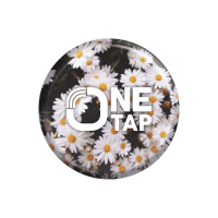 One Tap Hello Spring